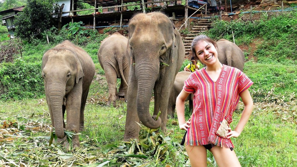 Chiang Mai Elephant Jungle Sanctuary