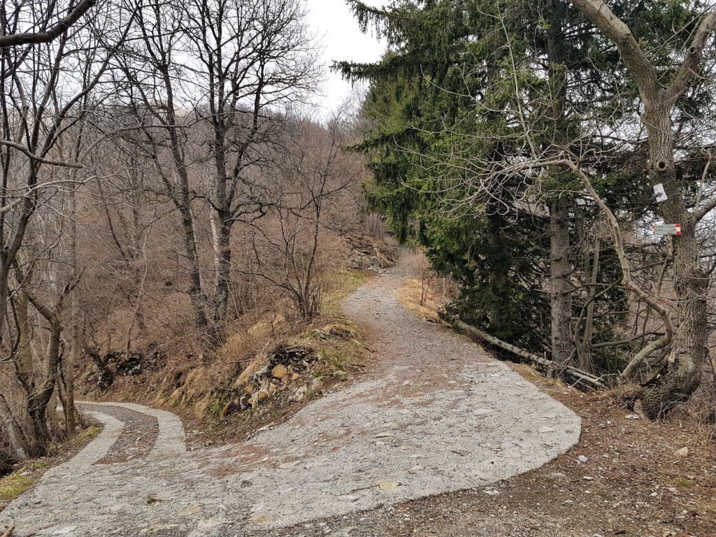 Sentiero con tornanti Monte Bolettone
