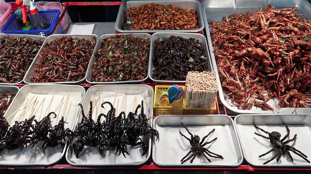 khao san road insetti