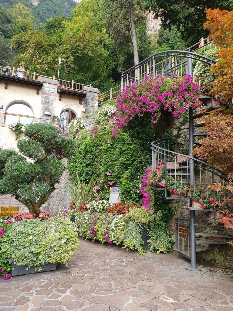 fiori cascata del varone