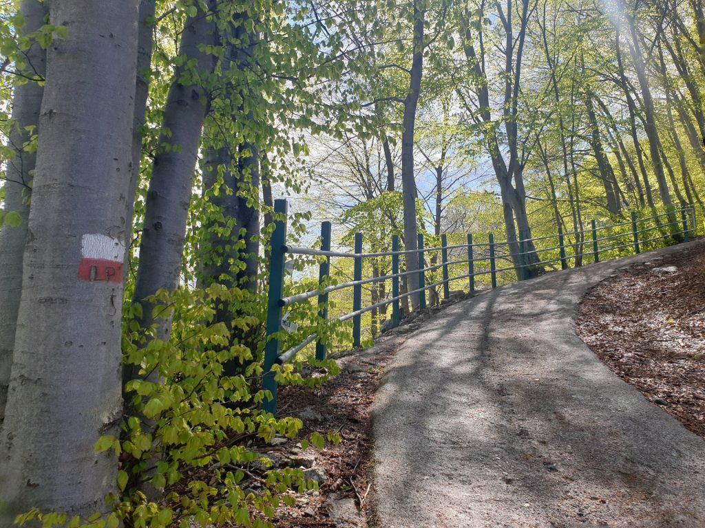 Sentiero Valbrona Fino al rifugio SEV