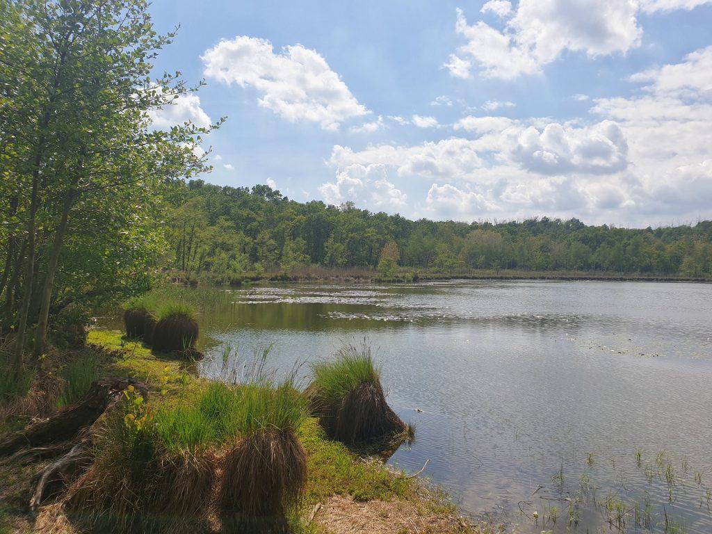parco dei lagoni di mercurago lago maggiore