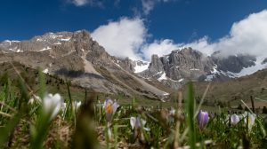 Escursione al Rifugio Fuciade – Val di Fassa