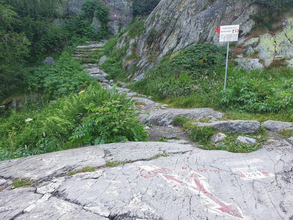 bivio sentiero 211 - verso rifugio calvi