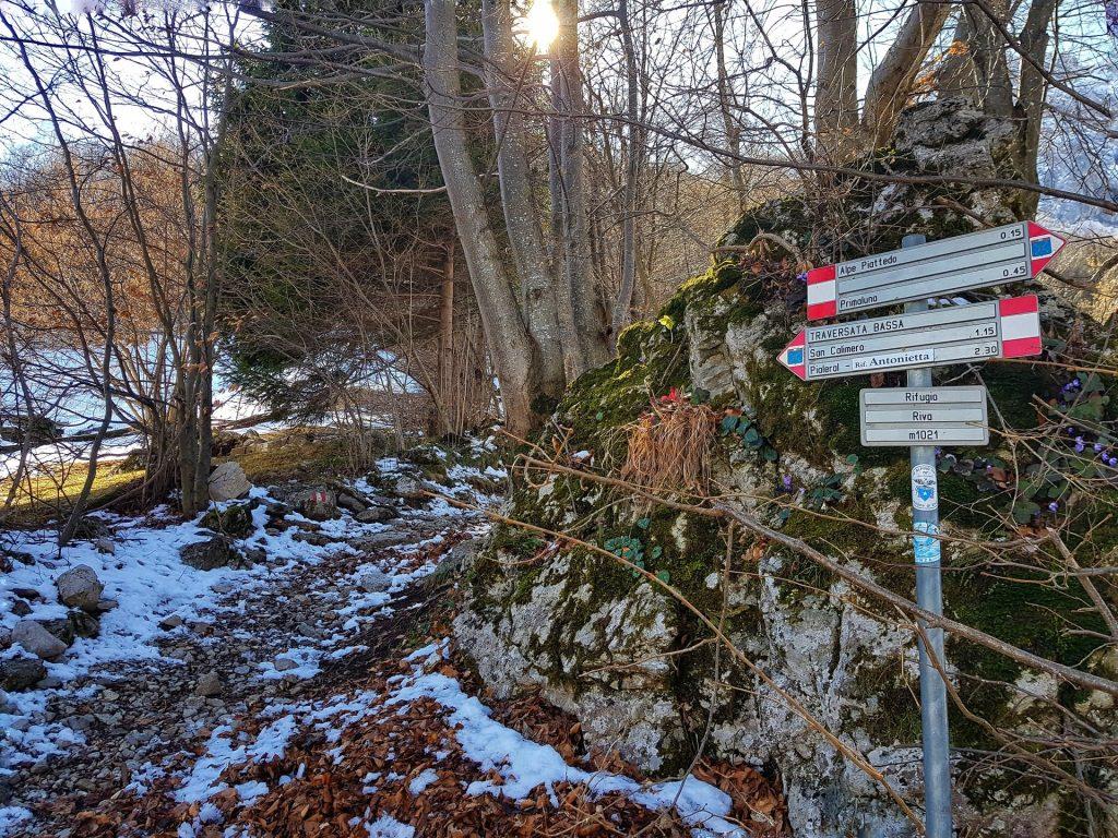 Sentieri che partono dal Rifugio Riva