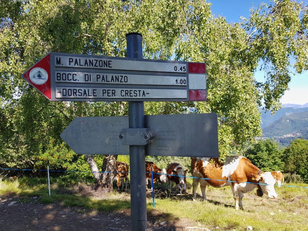 Monte Palanzone Cartello