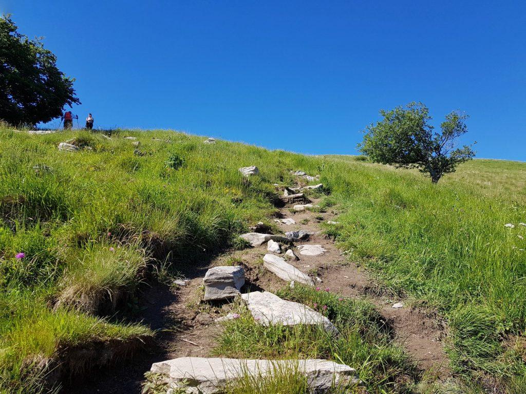 Sentiero in salita Monte Palanzone